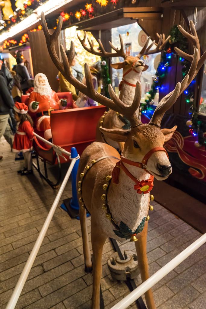 2015 赤レンガ倉庫 クリスマス・マーケット