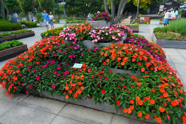 江ノ島 サムウェルコッキン苑