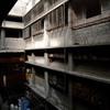 FinePix F100fdで撮影した写真