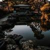 PowerShot SX60 HSで撮影した写真