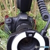GALAXY S4 SC-04E docomoで撮影した写真