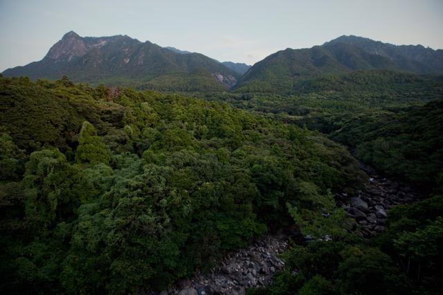 屋久島・朝のモッチョム岳