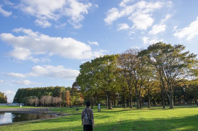 水元公園にて #2